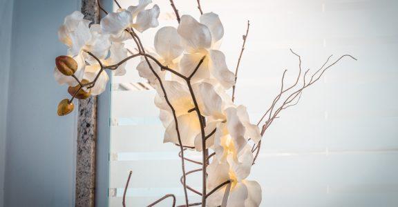 Suíte Orquídea – Pousada em Brotas
